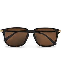 BR0057S Sunglasses Havana/Brown