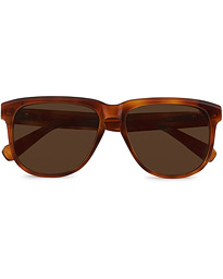 BR0063S Sunglasses Havana/Brown